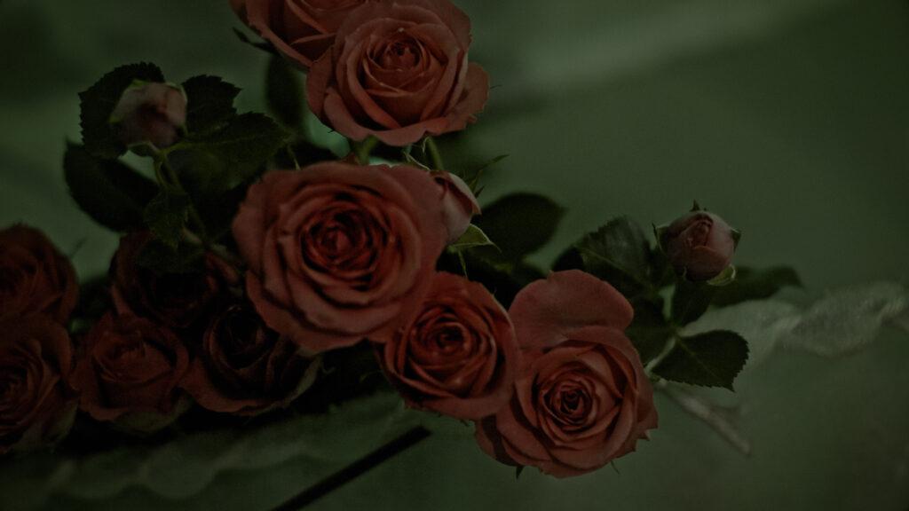 Flower boy 04
